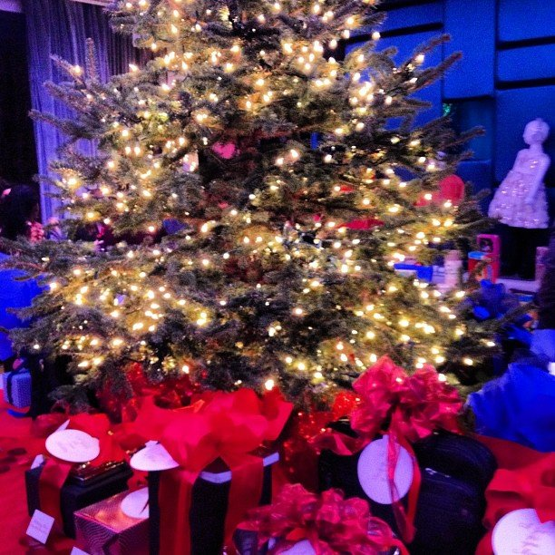 A beautiful tree with gifts aplenty; it's beginning to look a lot like Christmas . . .
