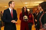 Kate Middleton and Prince William met with rugby fans before a match in Cardiff in November.