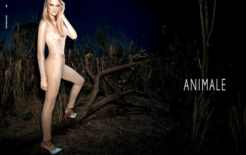 Animale Spring 2013