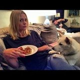 Jaime King's dog wants what she's having. Source: Twitter user Jaime_King