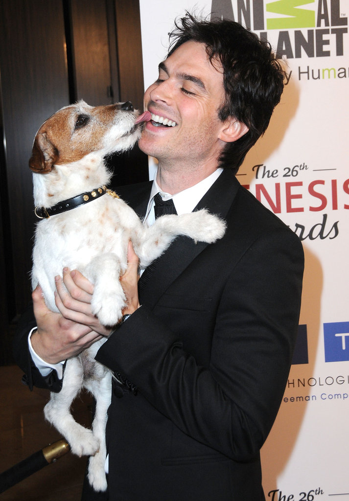 Ian Somerhalder got cute with Uggie in LA in March 2012.