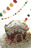 A Fun Gingerbread House