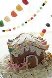 A Fun Gingerbread House