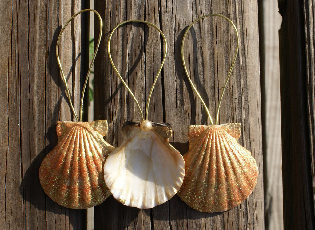 Diy christmas ornaments popsugar smart living for Seashell ornaments diy