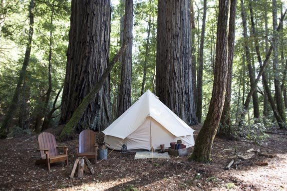 A Camping Trip With Shelter Co.