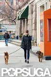 Jessica Biel took her dogs for a walk around NYC.