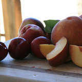 Affordable: Frog Hollow Fruit