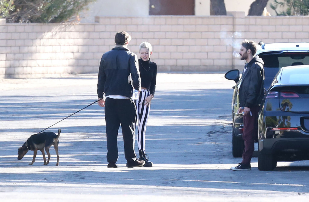 Miley Cyrus and Liam Hemsworth took their dog out for some air.