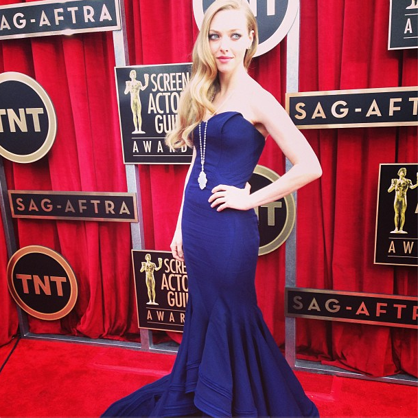 Amanda Seyfried posed in Zac Posen. Source: Instagram user sagawards