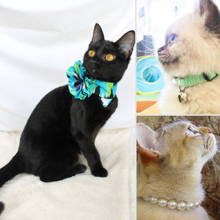 Cute Handmade Cat Collars