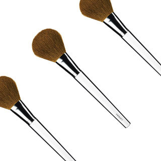 What Is a Blush Brush and How to Use a Blush Brush