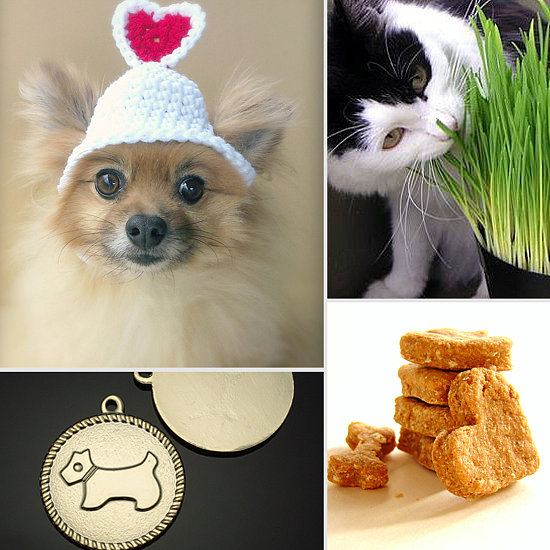 Must Haves For Your Pet This Month