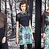 Charlotte Ronson Runway | Fashion Week Fall 2013 Photos