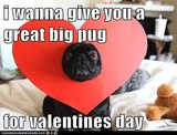 14 Hilarious Valentine's Day Memes