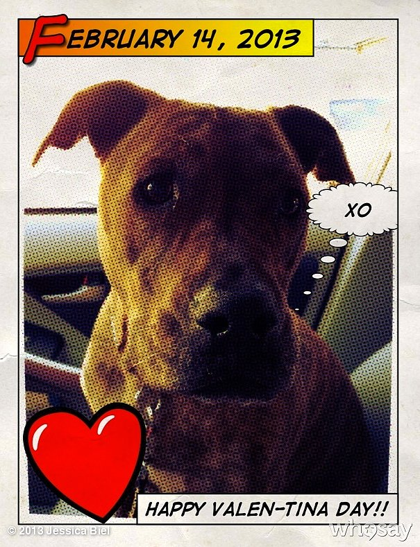 Jessica Biel made a Valentine's Day card inspired by her dog. Source: WhoSay user jessicabiel