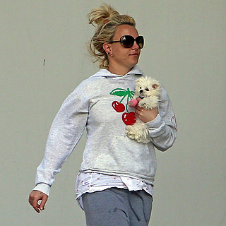 Britney Spears Taking Her New Puppy to the Vet | Pictures