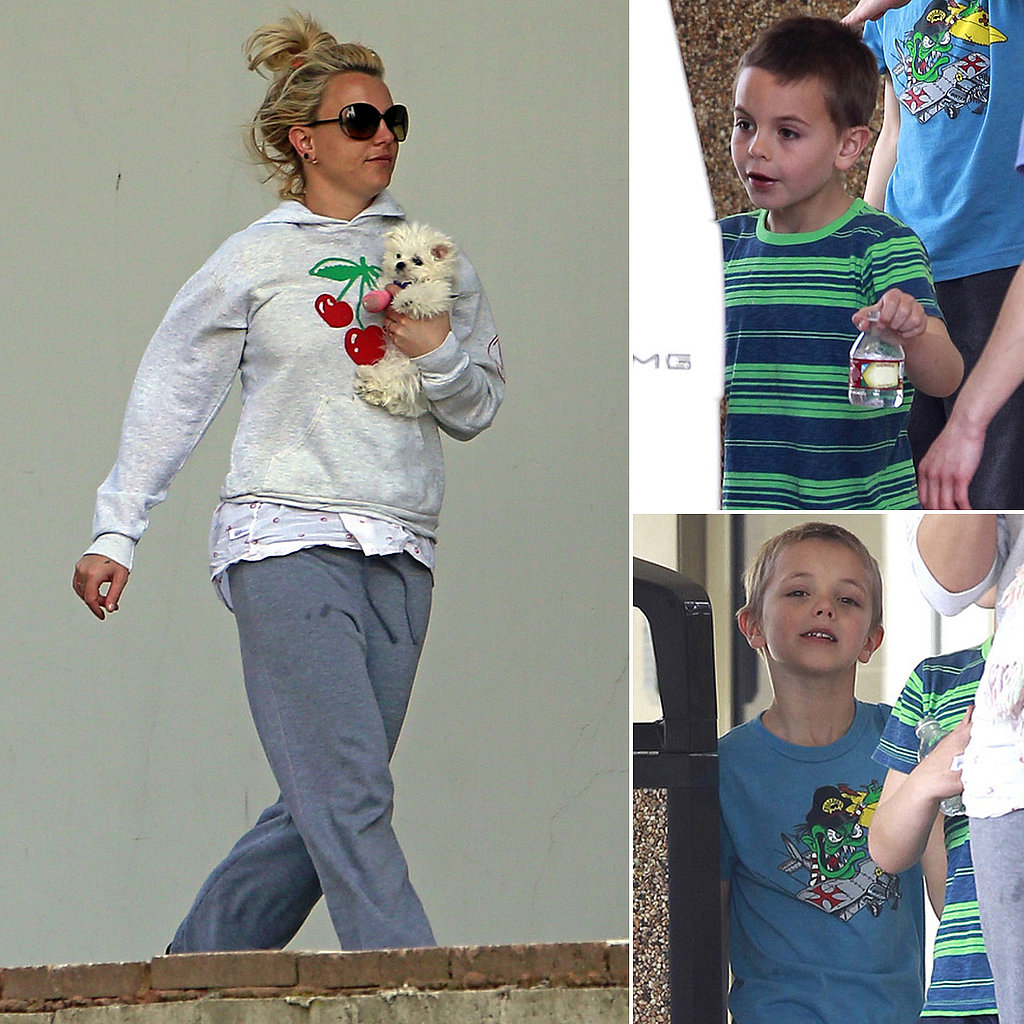 Britney Spears and Her Boys Leave the Vet With a Pink-Cast-Clad Puppy