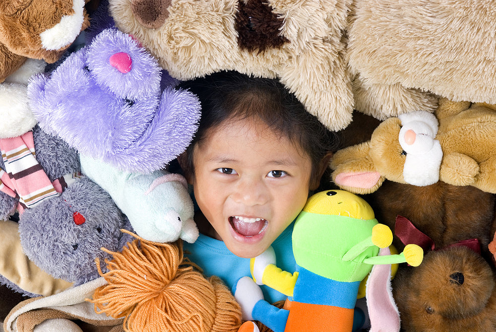 How to Tame a Stuffed Animal Collection Gone Wild!