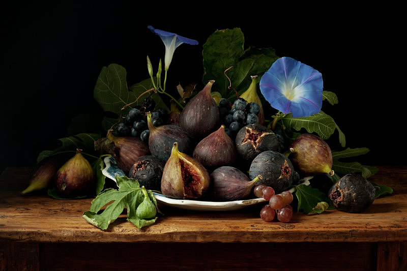 Figs and Morning Glories