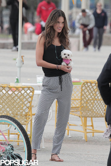 Alessandra Ambrosio posed with her dog for a Victoria's Secret photo shoot.