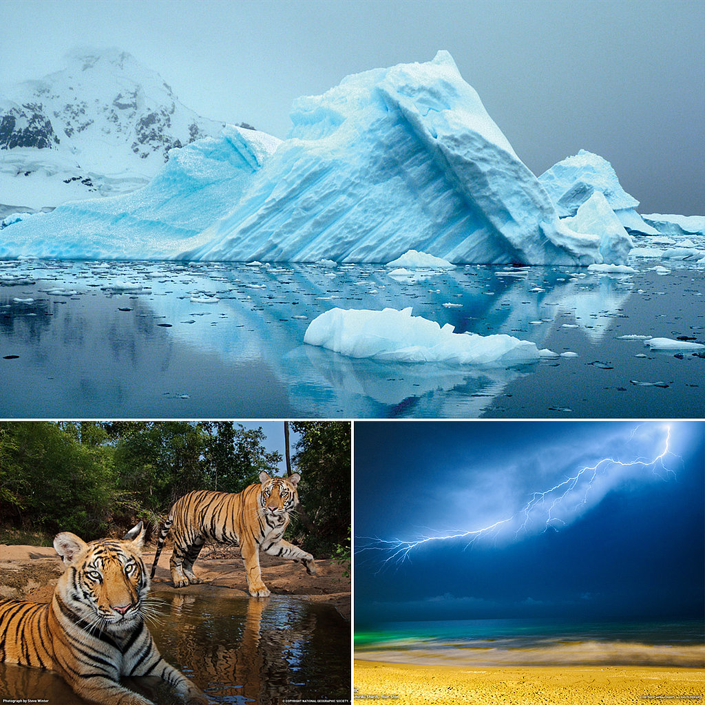 national geographic desktop wallpapers popsugar smart living