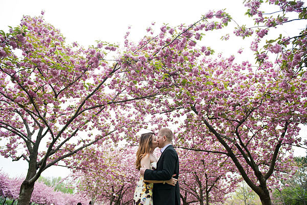 Smooch Under Cherry Blossoms