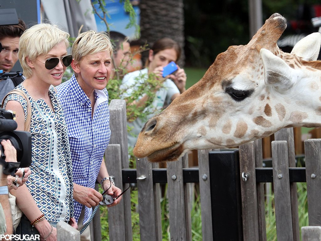 Ellen DeGeneres and Portia de Rossi met a giraffe at the Taronga Zoo in Australia during a March visit.