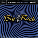 """Save a Horse (Ride a Cowboy)"" by Big & Rich"