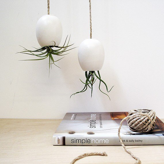 Upside-down egg-shaped planters ($32 each) hang from rough hewn rope for a naturalistic look. These would be beautiful in multiples or when hung alone.