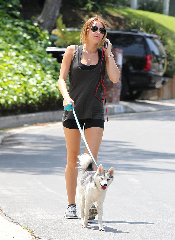 Miley Cyrus, an avid dog lover and advocate for canine adoption, walked her Miniature Husky, Floyd, in LA back in April 2012.