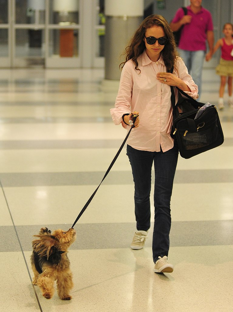 Natalie Portman's furry friend, Whiz, accompanied her to JFK airport in NYC in July 2012.