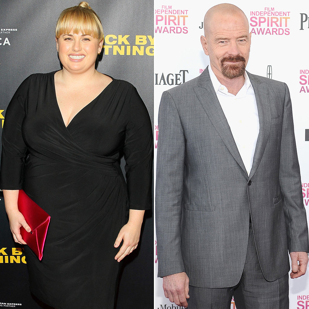 Mads Mikkelsen, Rebel Wilson, and Bryan Cranston joined Kung Fu Panda 3, alongside returning voice actors Jack Black, Seth Rogen, and Angelina Jolie.