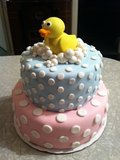 Pink and Blue Duck Cake