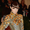 Pictures Coco Rocha at the 2013 Met Gala