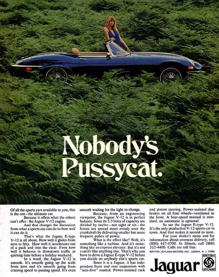 """Nobody's Pussycat."" The car or the woman?"
