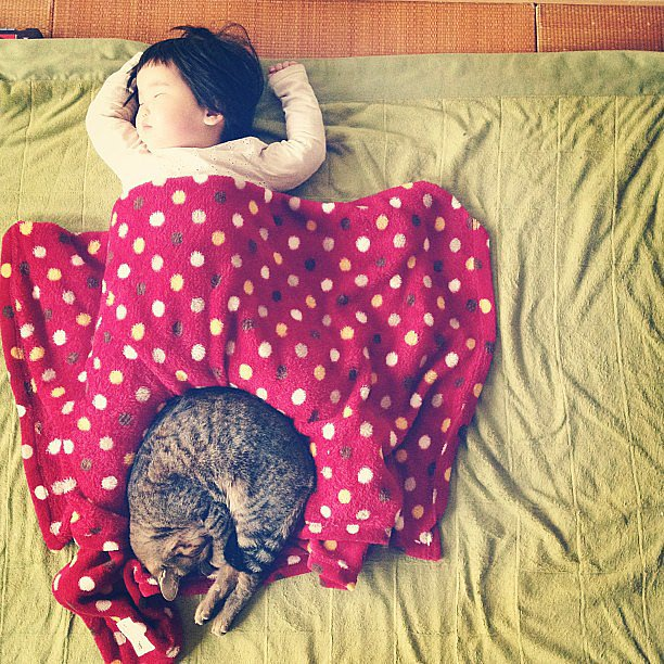 Oh, and if you survived the last one, here's the girl/cat version of the cute pair: Toco the cat and his best friend. Source: Instagram user makicocomo
