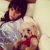 Zooey Deschanel and her iconic bangs chilled out with her pup. Source: Instagram user zooeydeschanel