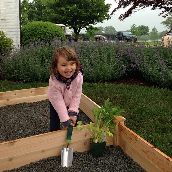 Ivanka Trump's little girl, Arabella Kushner, got her hands dirty with her first garden. Source: Instagram user ivankatrump
