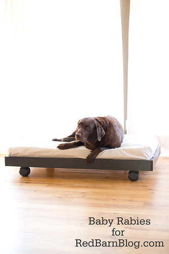 Upcycle Your Crib Mattress Into a DIY Dog Bed