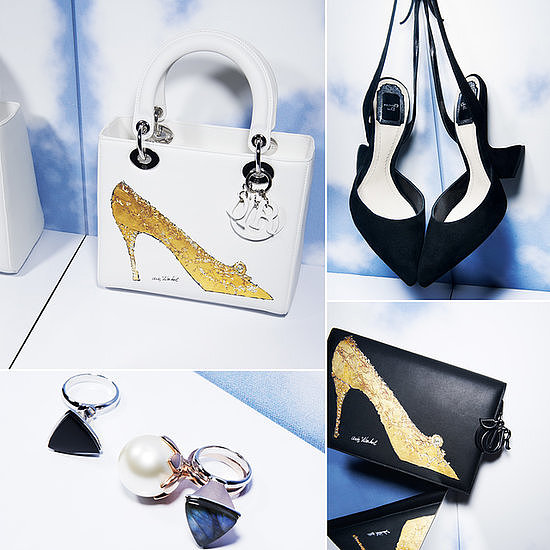 See every artistic accessory from Dior's Fall 2013 collection.