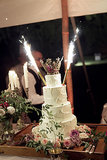There were even fireworks in the cake. Photo by Steve Steinhardt via Style Me Pretty