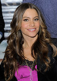Gorgeous waves and strategic contouring is another signature look, which she wore for the launch of her Kmart collection, Sofia by Sofia Vergara, in 2011.