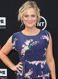 "Amy Poehler told Time Out New York why she considers herself a feminist: ""The answer is yes, I consider myself a feminist, and it informs my work only in that it's just who I am, in the same way that I'm a woman, or I'm 5'2"" or whatever. I was lucky that I came through a system that had many people who did much more hard work and road-clearing before I got there."""