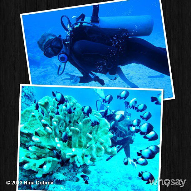Nina Dobrev went deep-sea scuba diving.  Source: Nina Dobrev on WhoSay