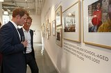 Prince Harry chatted with photographer Chris Jackson at the exhibition.