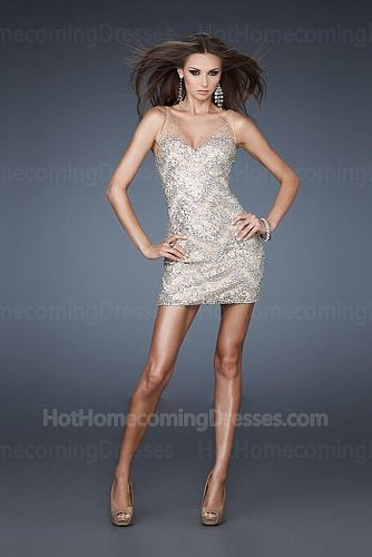 Sheer Straps Nude Sexy Short Homecoming Dresses 2013 Online Sale