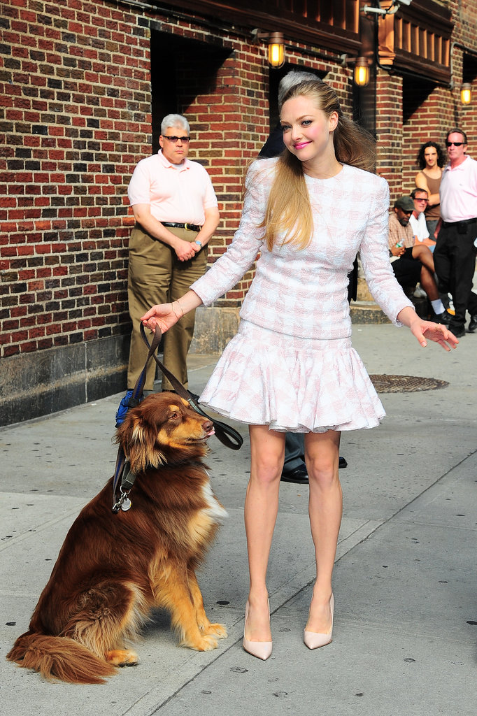 Amanda Seyfried brought her dog, Finn, along for a press stop in NYC.