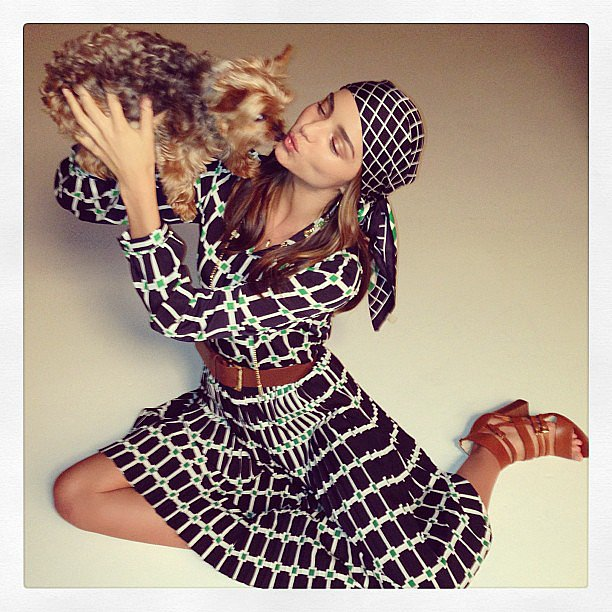 Miranda Kerr can usually be seen toting her Yorkshire terrier, Frankie, around NYC. He's popped up on many of Miranda's photo shoots, and even graced a cover of Vogue Italia. Miranda and her husband, Orlando Bloom, also have another pup, a rescue dog named Sidi. Source: Instagram user mirandakerr