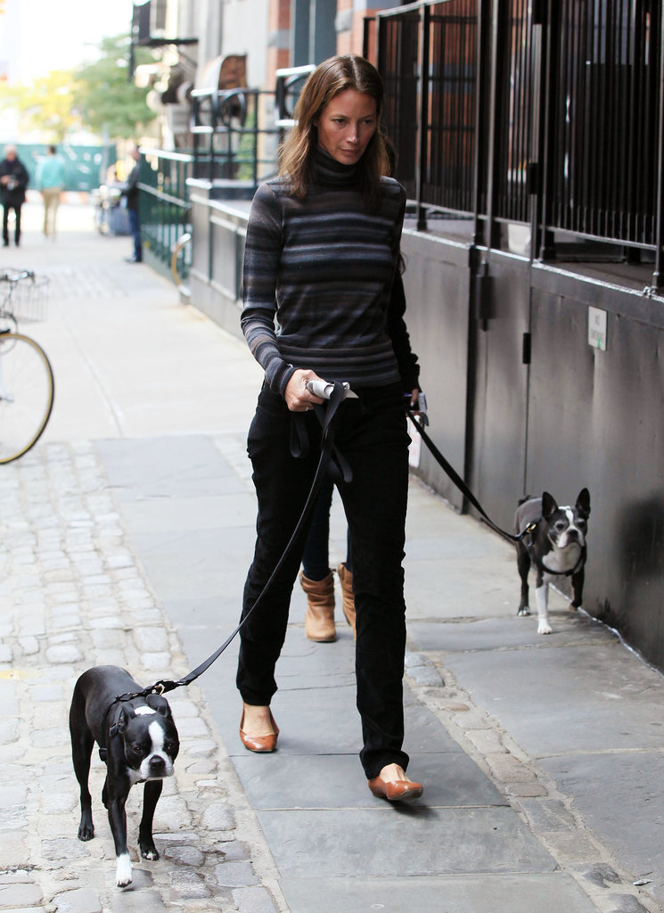 Christy Turlington has double the cuteness on her hands with Boston terriers Fitzy and Micky.