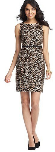 Leopard Print Grosgrain Waist Sheath Dress